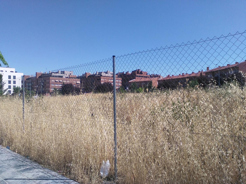 Zona El Fuerte