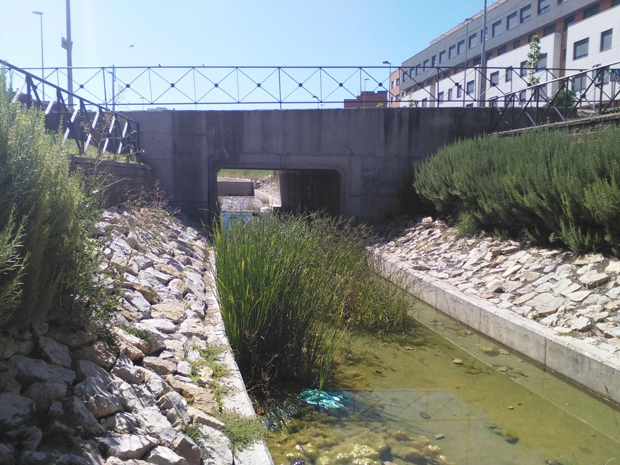 Canal El Fuerte (2)