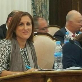 El Grupo Ciudadanos (C's) en la Diputación exige el anticipo de fondos por parte de la Junta para el Plan de Empleo en la región