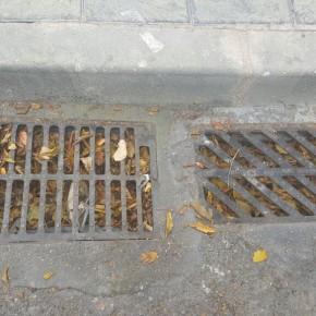 Ciudadanos (C's) Azuqueca solicita al Equipo de Gobierno una actuación urgente en materia de limpieza viaria