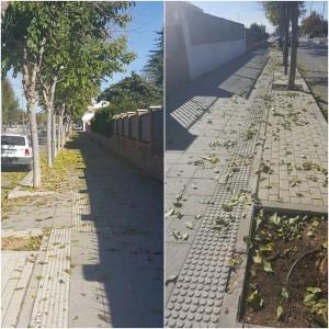 Acumulación de hojarasca en distintos puntos de la localidad.