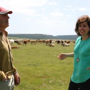 Orlena de Miguel charla distendidamente con un ganadero de Cantalojas