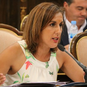 La Diputación pide garantizar el acceso al mercado laboral de las personas con diversidad funcional