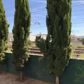 Ciudadanos (C's) Azuqueca solicita al Ayuntamiento mejoras en el entorno de la estación