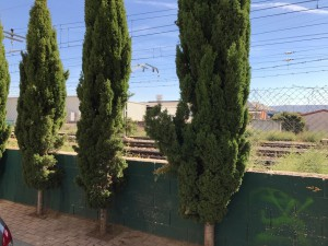 10.02.2017 Vallado tren