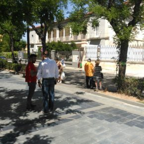 Cs Guadalajara reclama una solución a los 30 pasos no señalizados del bulevar del Paseo de Las Cruces