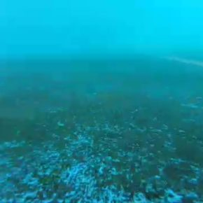 Ciudadanos Azuqueca de Henares se une, también a las quejas sobre la falta de mantenimiento de la piscina municipal